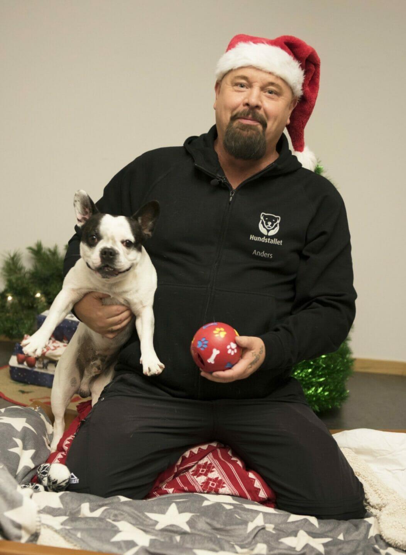hundstallets-julmarknad